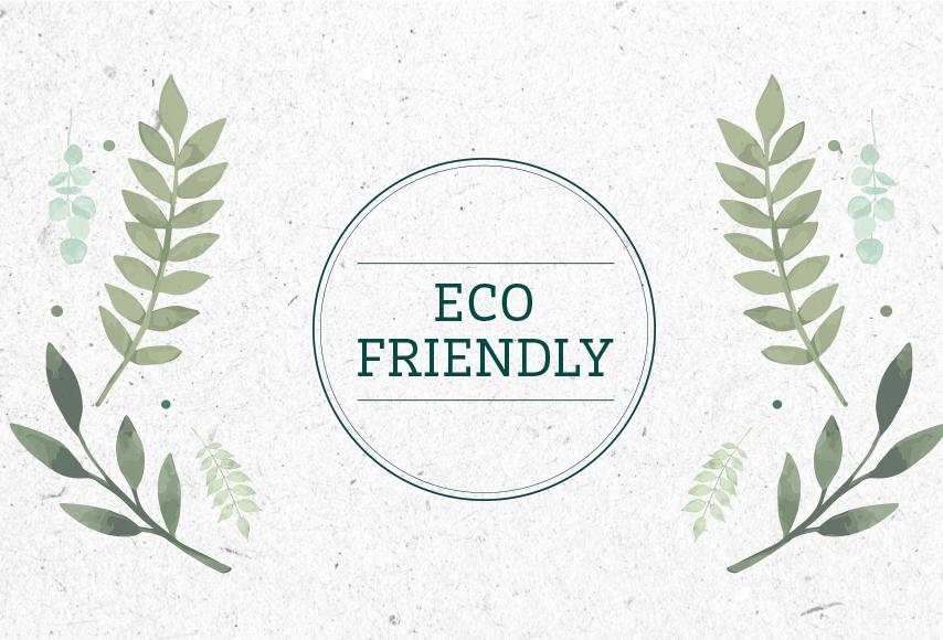 eco-friendly-hub