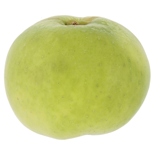 Cooking Apples Loose