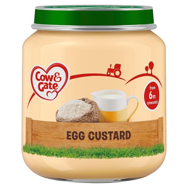 Egg Custard Baby Food Recipe